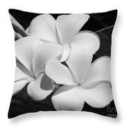 Frangipani In Black And White Throw Pillow