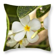 Frangipani Plumeria Flower Throw Pillow