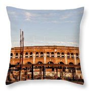 Franklin Field In The Morning Throw Pillow
