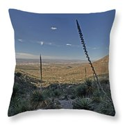 Franklin Mountains Landscape 4 Throw Pillow