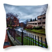 Franklin Park Throw Pillow by Everet Regal