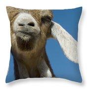 Frankly My Dear I Don't Give A Baaaaaaaaa Throw Pillow