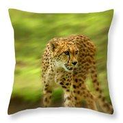 Frantic Throw Pillow