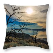 Frary Trail Trees Throw Pillow