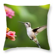 Free As A Bird Hummingbird Throw Pillow