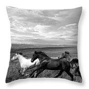 Free Range Running Horses Throw Pillow