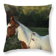Free To Dream Throw Pillow