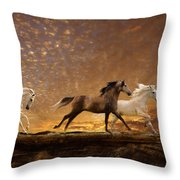 Freed Spirits Throw Pillow