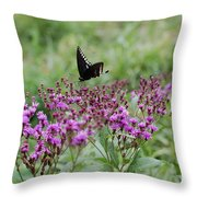 Freedom By Jrr Throw Pillow