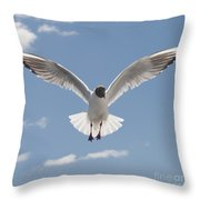 Freedom.. Throw Pillow