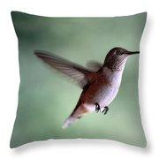 Freedom - Pillow Format Throw Pillow