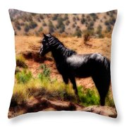 Freedoms's Home Throw Pillow