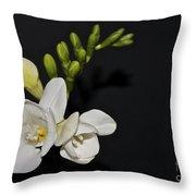 Freesia On Black Throw Pillow