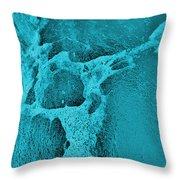 Freeway Pole Art Sailor-pole Art Photo Series Turquoise Black Throw Pillow