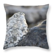 Freeze Gurgling Water Throw Pillow
