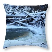 Freezing Dam Throw Pillow