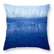 Freezing Throw Pillow
