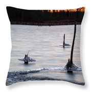 Freezing Lake Throw Pillow