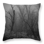 Freezing Rogue Valley Fog At Night Throw Pillow