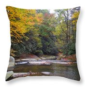 French Broad River In Fall Throw Pillow