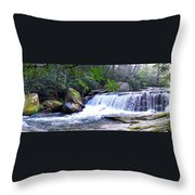 French Broad River Waterfall Throw Pillow