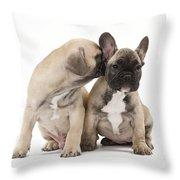 French Bulldog Puppies Throw Pillow