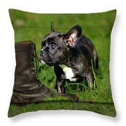 French Bulldogs Throw Pillow by Heike Hultsch