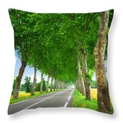 French Country Road Throw Pillow