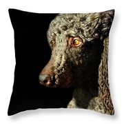 French Poodle Standard Throw Pillow by Diana Angstadt