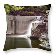 Frenchs Hollow Falls Throw Pillow