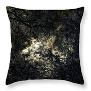 Frequencies Of Nature Throw Pillow