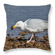 Fresh Crab For Lunch Throw Pillow