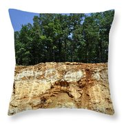 Fresh Cut Mountain Throw Pillow