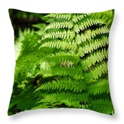 Fresh Fern - Featured 2 Throw Pillow