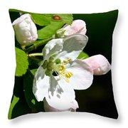 Fresh Fruit Blossoms Throw Pillow