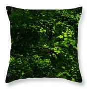 Fresh Linden Tree Foliage - Featured 2 Throw Pillow