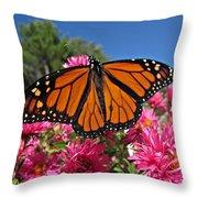 Fresh Monarch Butterfly Throw Pillow