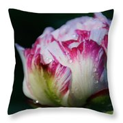 Fresh New Beginnings Throw Pillow