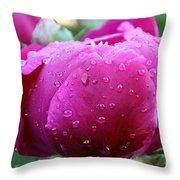 Fresh Rain Throw Pillow