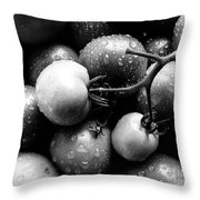 Fresh Ripening Tomatoes In Black And White. Throw Pillow