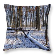 Fresh Snow In The Woods Throw Pillow