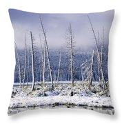 Fresh Snowfall And Bare Trees Throw Pillow