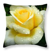 Fresh Sunshine Daydream Rose Throw Pillow