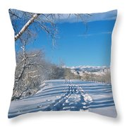 Fresh Tracks Throw Pillow