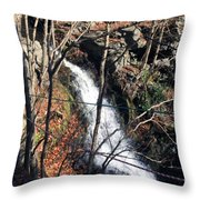 Fresh Water Streams Around Poconos Pa America Usa  Throw Pillow