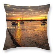 Fresh Water Sunset Throw Pillow