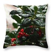 Fresh Winter Rain Throw Pillow