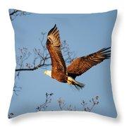 Freshening The Nest Throw Pillow
