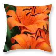 Freshly Showered Tiger Lilys Throw Pillow