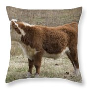 Frick In Profile Throw Pillow
